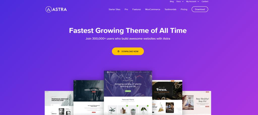 Astra WordPress theme- magicwithwp